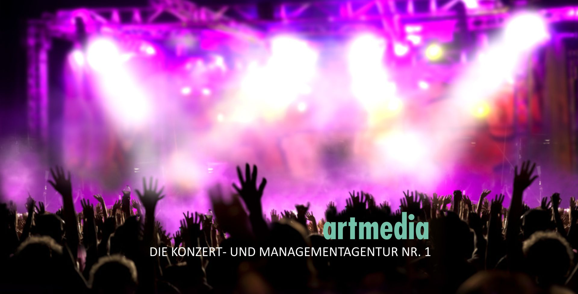2017artmediaPageSlideshowlila4